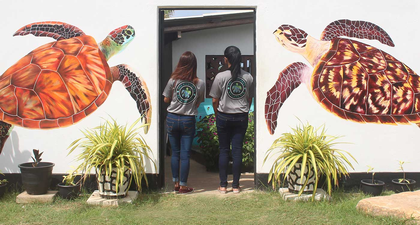 Kosgoda Turtle Hatchery Entrance